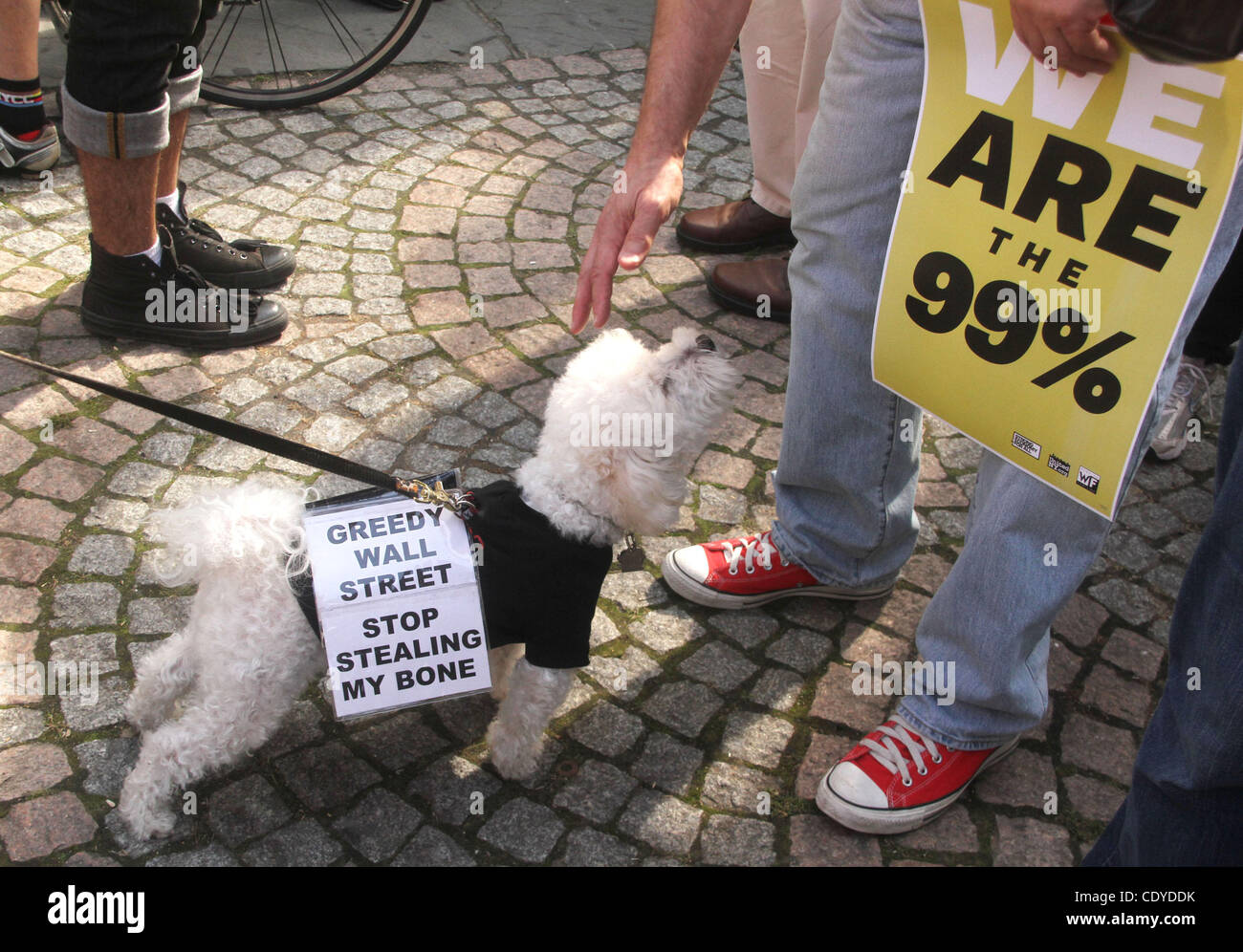 Oct. 11, 2011 - New York, New York, U.S. - 'Occupy Wall Street' Protester pets a dog with a protest sign - Stock Image