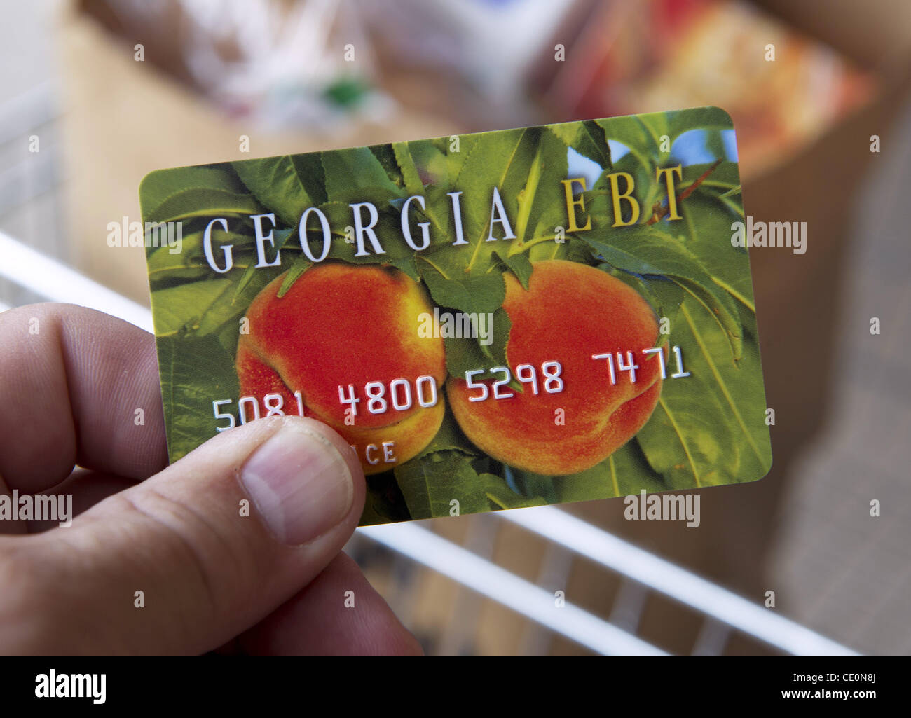Atlanta Georgia Food Stamp Application