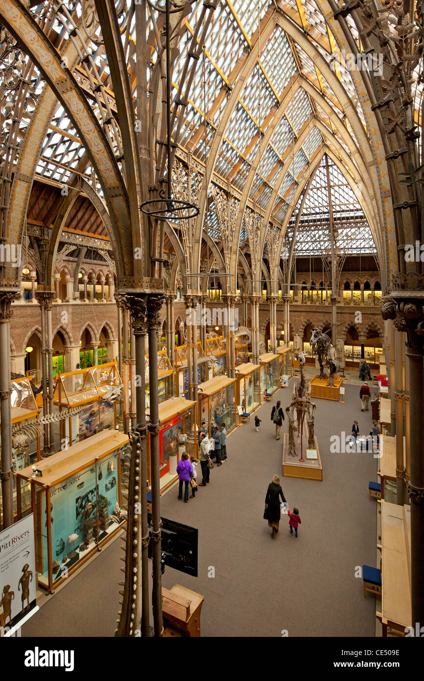 University of Natural History, Oxford, England - Stock Image
