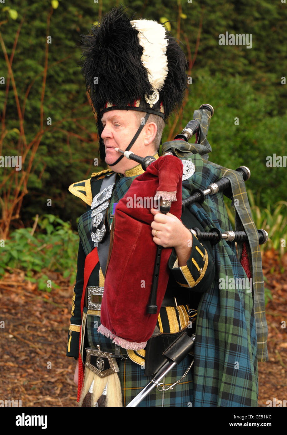 A military piper in full highland dress - Stock Image
