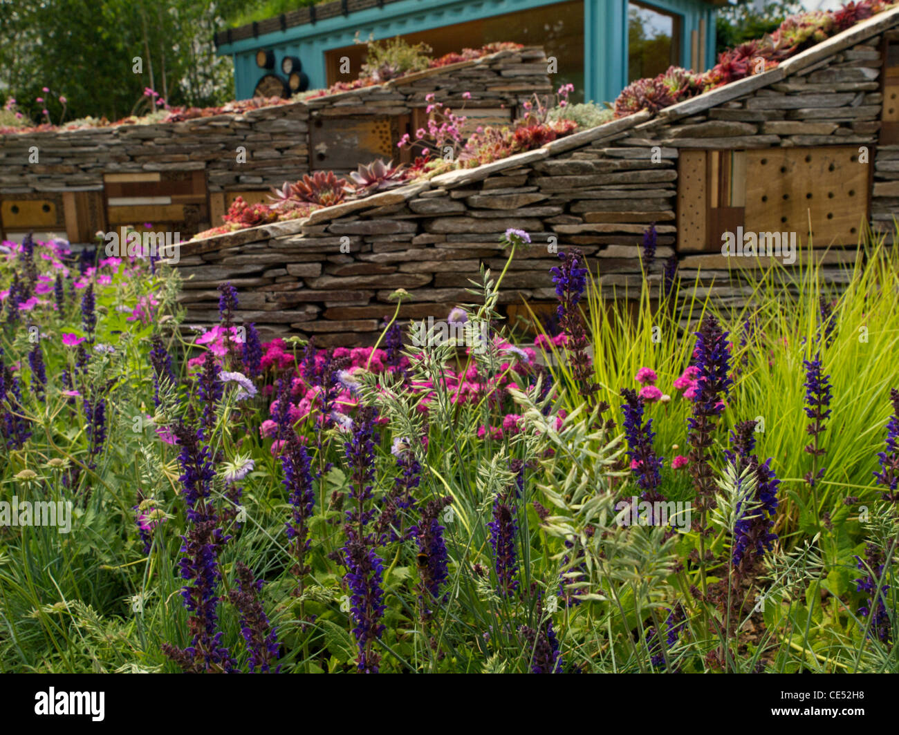 New Wild Garden - natural planting and insect friendly features at the front of the show garden - Stock Image