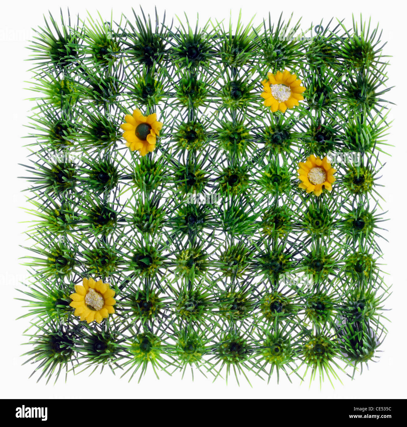 Quadratic, artificial grass, meadow, with yellow plastic flowers. Decoration. Stock Photo
