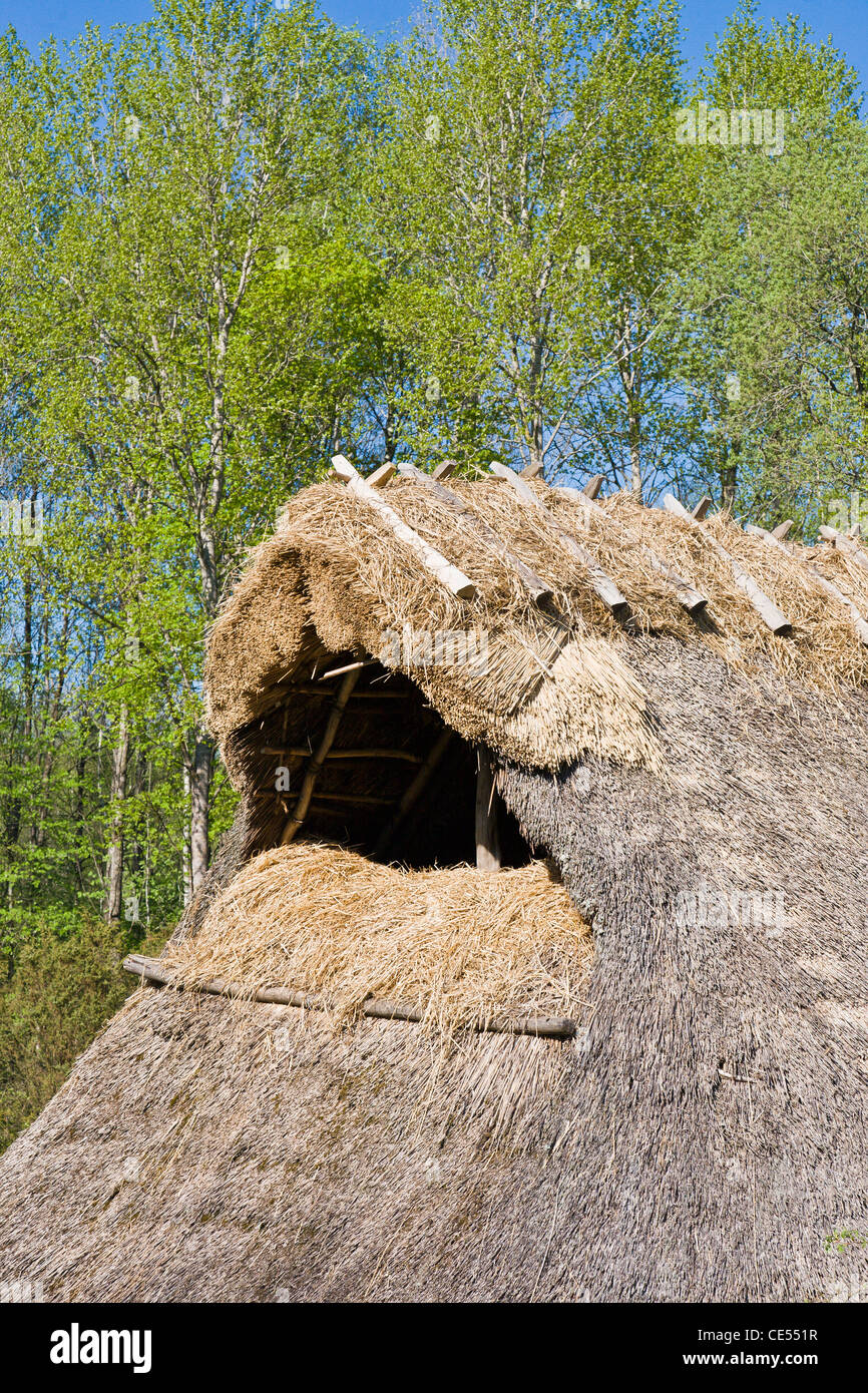 Covered roof gable with reeds - Stock Image