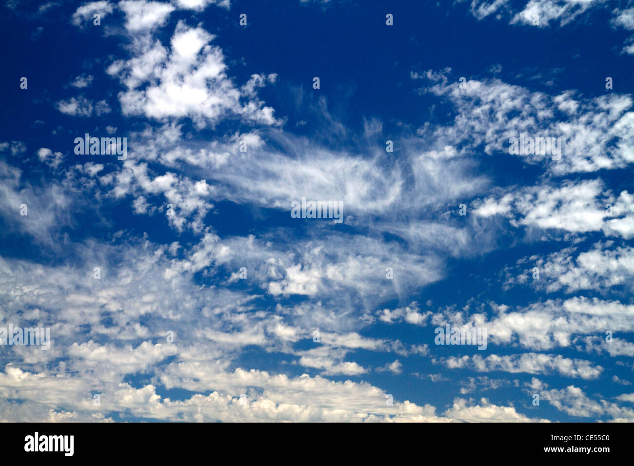 Cirrus clouds in the blue sky. - Stock Image