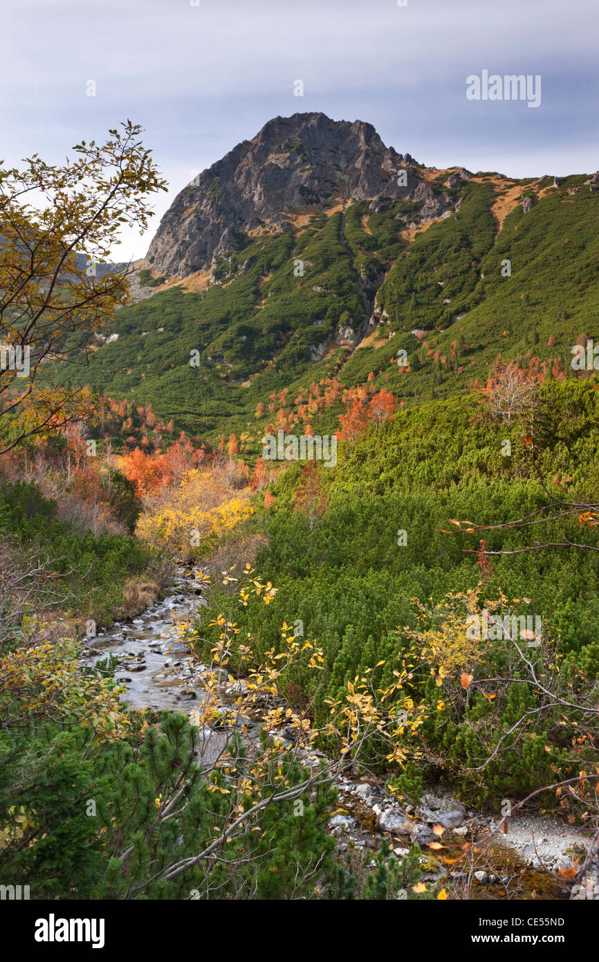 Autumn in the mountains of the High Tatras, Slovakia, Europe. Autumn (October) 2011. - Stock Image