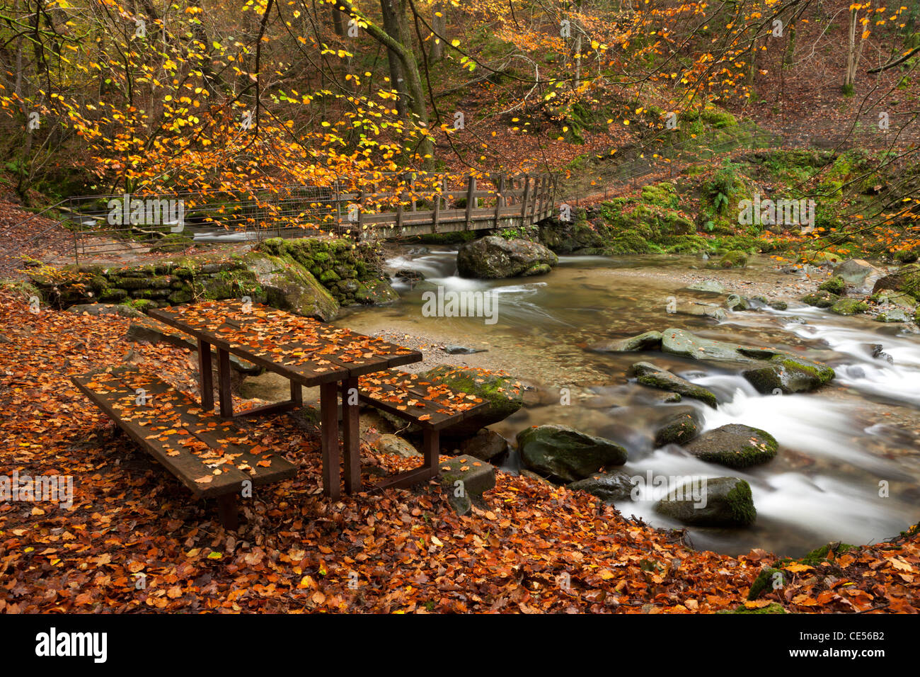 Picnic bench beside Stockghyll Force river, Ambleside, Lake District, Cumbria, England. Autumn (November) 2011. - Stock Image