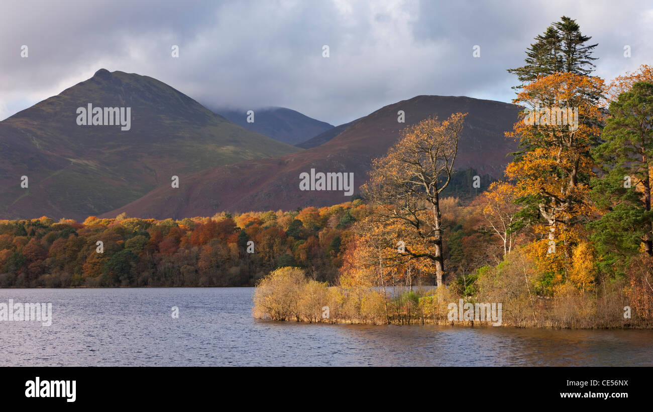 Autumn foliage on the banks of Derwent Water, Keswick, Lake District, Cumbria, England. Autumn (November) 2011. - Stock Image