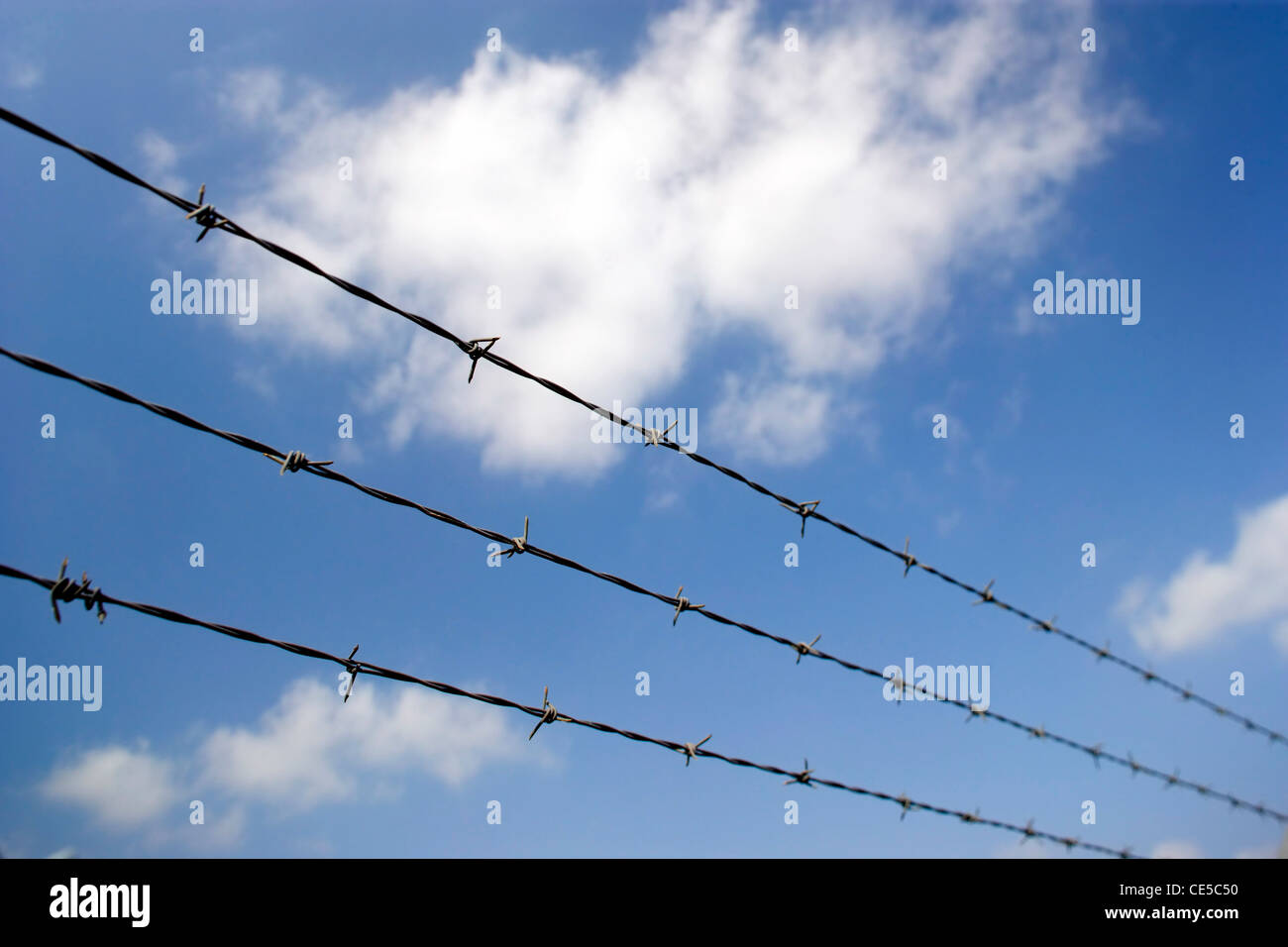 Barbed wire fence against a clear blue sky - Stock Image