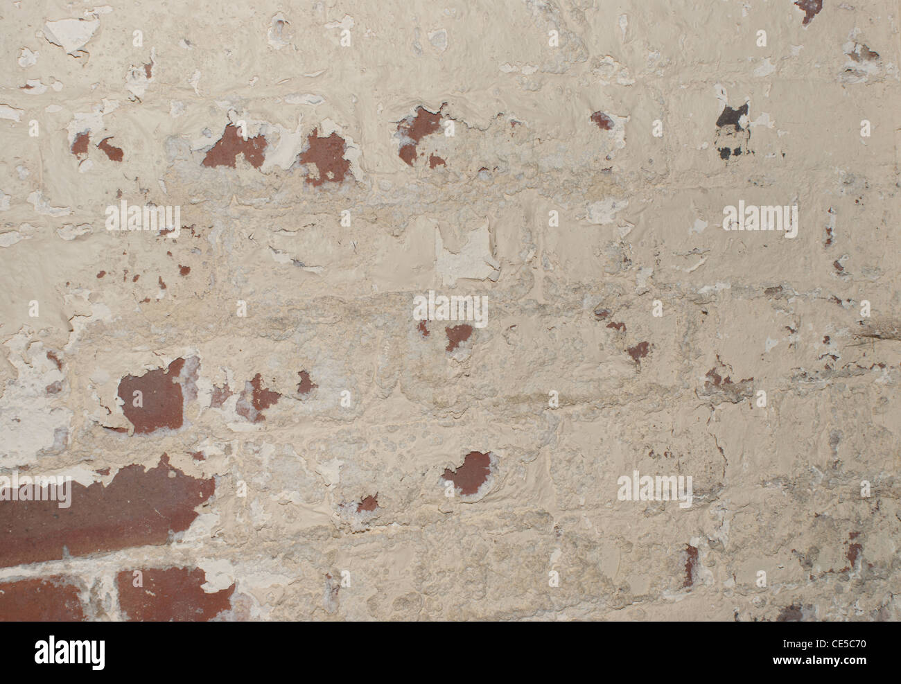 Damp wall paint flacking off - Stock Image