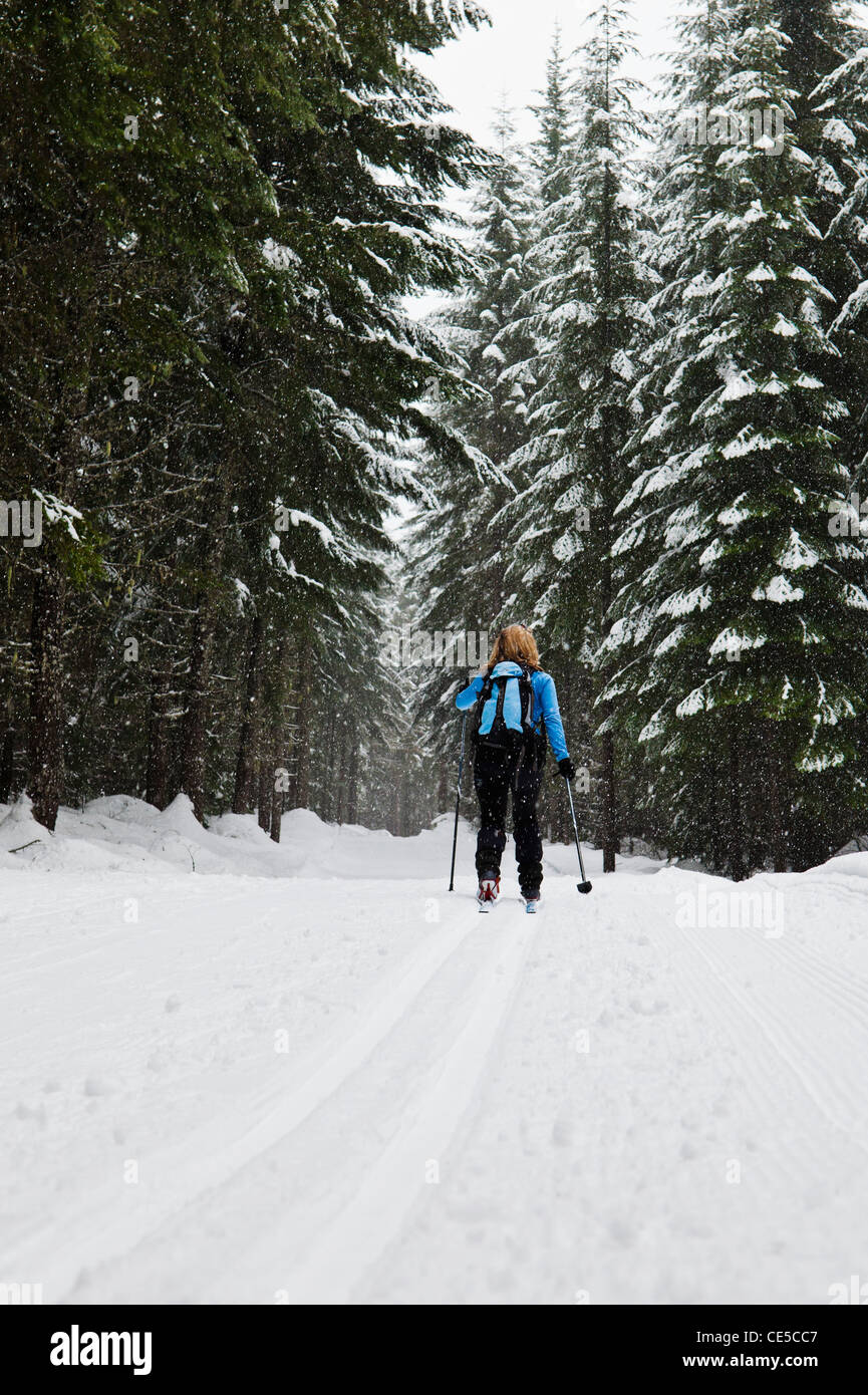A low angle view of a woman cross country skiing in the classic style on a groomed course at Cabin Creek Snow Park, - Stock Image