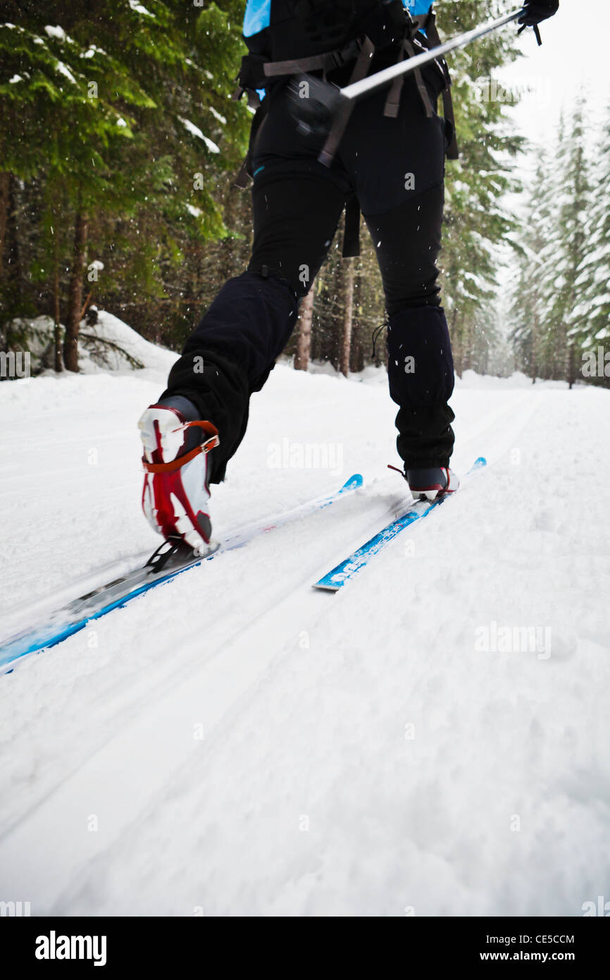 Low angle view of a woman cross country skiing in classic style on a groomed track, Cabin Creek, WA. - Stock Image
