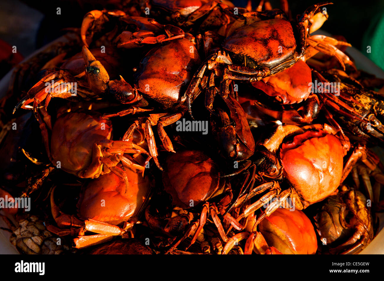 Crabs for sale in front of The Royal Palace, Phnom Penh, Cambodia. credit: Kraig Lieb - Stock Image
