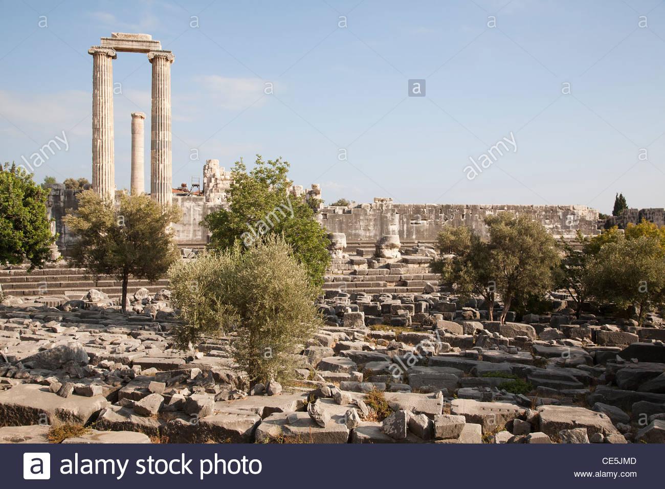 temple of apollo,archeological area,didyma,southern aegean coast,turkey,asia - Stock Image