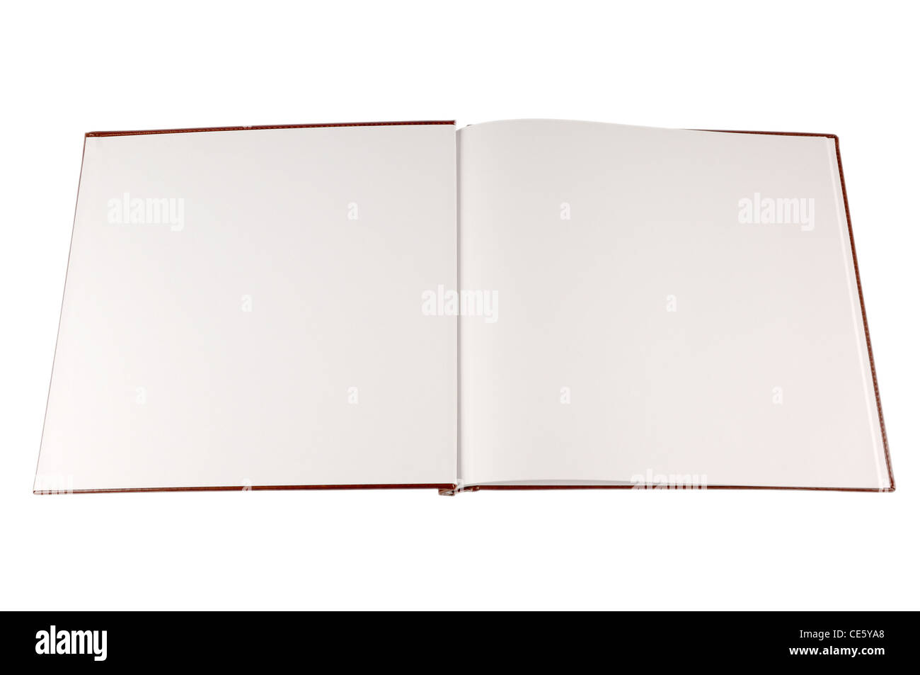 Open book with blank white pages isolated on white - Stock Image