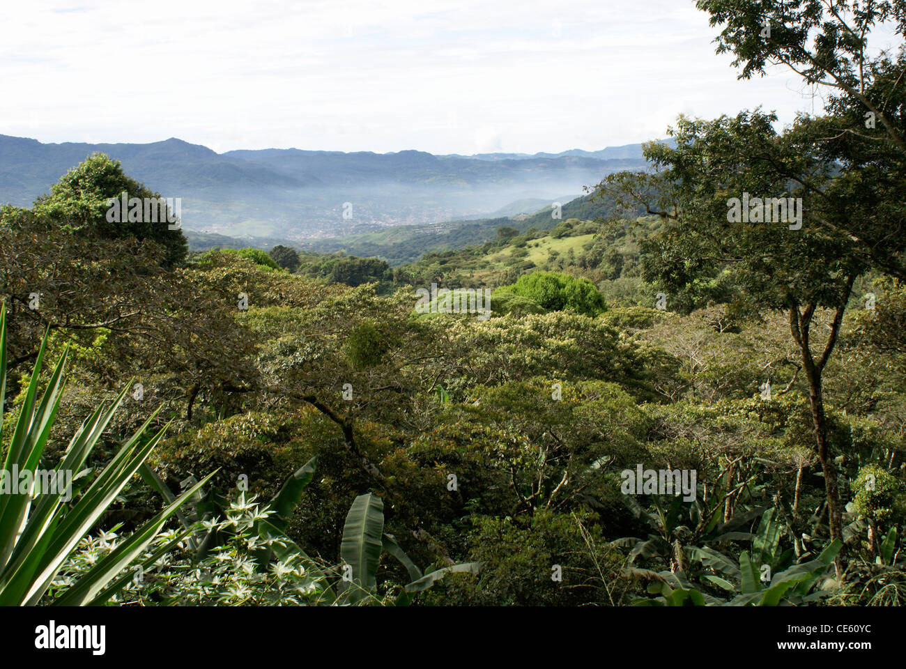 Forested mountainsides and valley near Matagalpa, Nicaragua - Stock Image