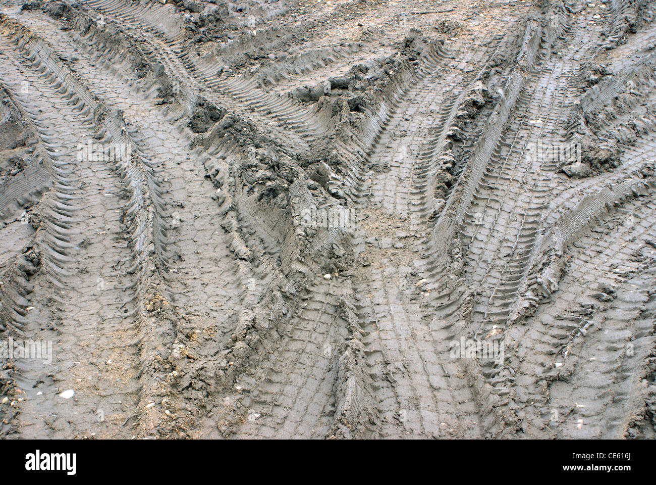 Traces on the dirty earth. - Stock Image