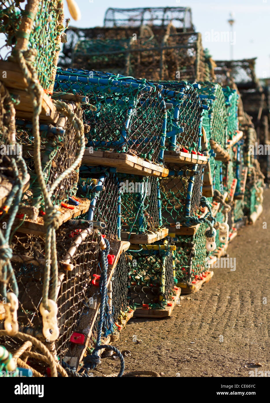 Lobster crab nets on a harbor - Stock Image