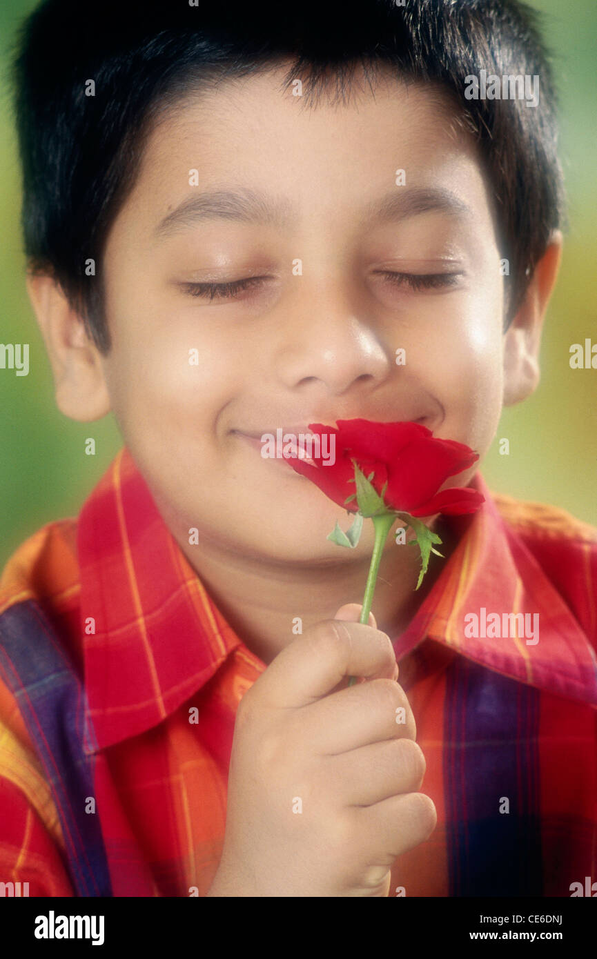 small young boy smelling red rose   MR#152 Stock Photo