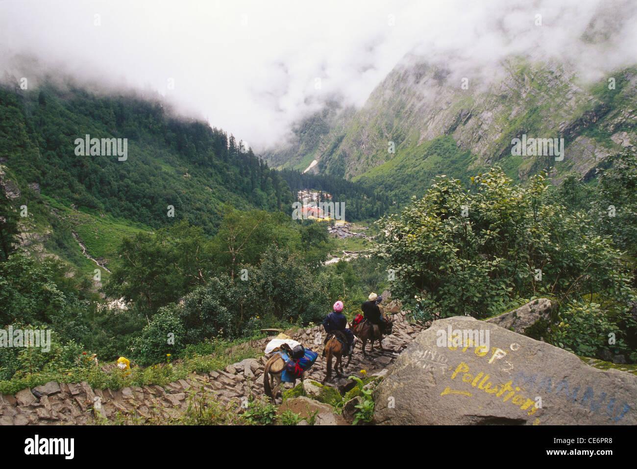 path for trek to Hemkund Sahib near Ghangharia ; valley of