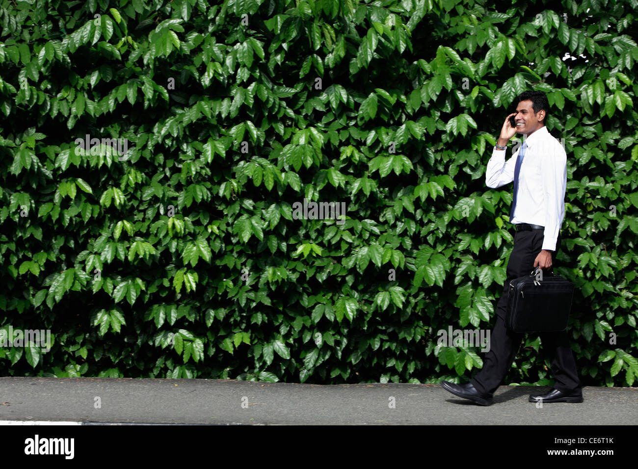 Indian man walking in front of green leafy hedge - Stock Image