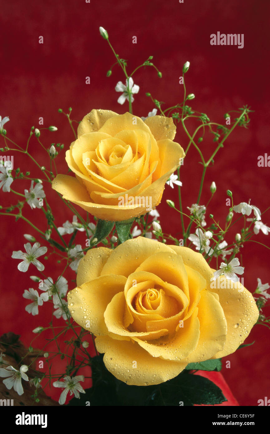 Bdr 86322 Artificial Flowers Arrangement Of Two Yellow Roses And