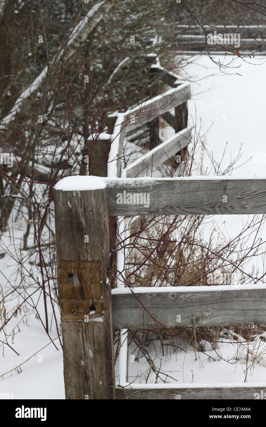 Crooked wooden fence in winter - Stock Image