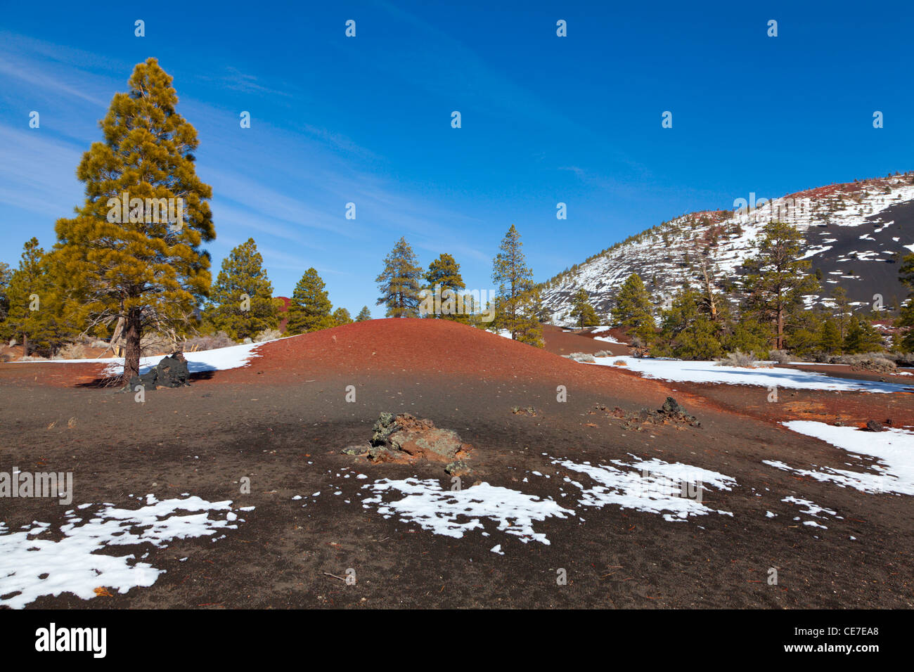 Lava field at Sunset Crater volcano in Arizona - Stock Image