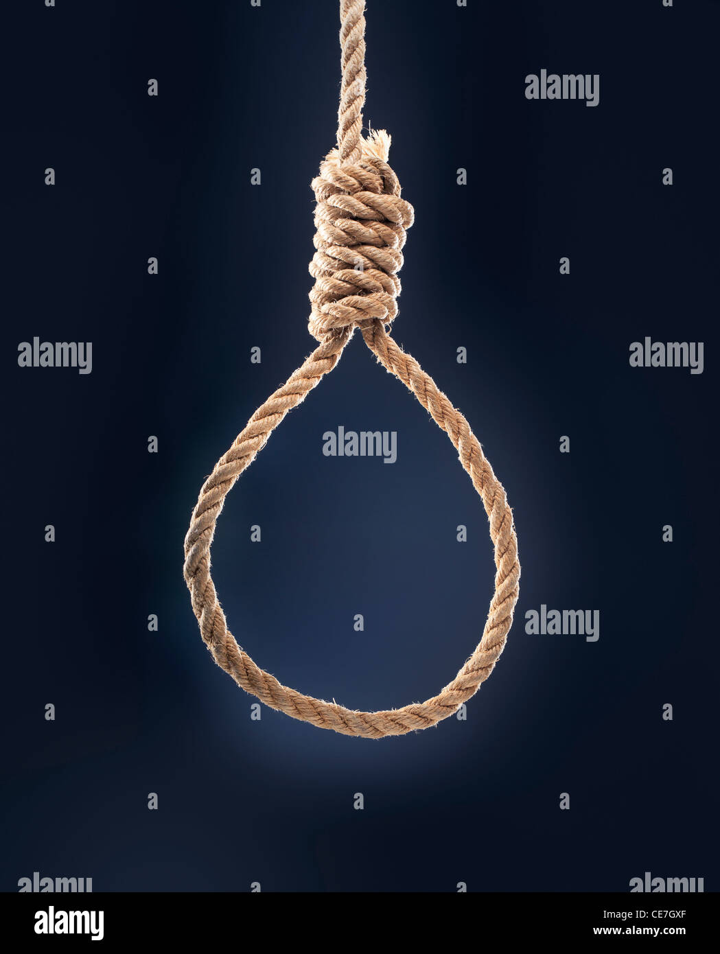 Rope noose with hangman's knot hanging in front of blue background. - Stock Image