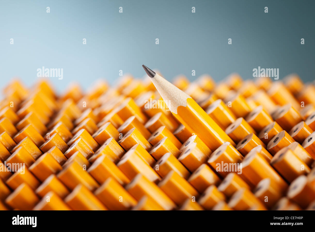 Sharpened pencil amongst other pencils. - Stock Image