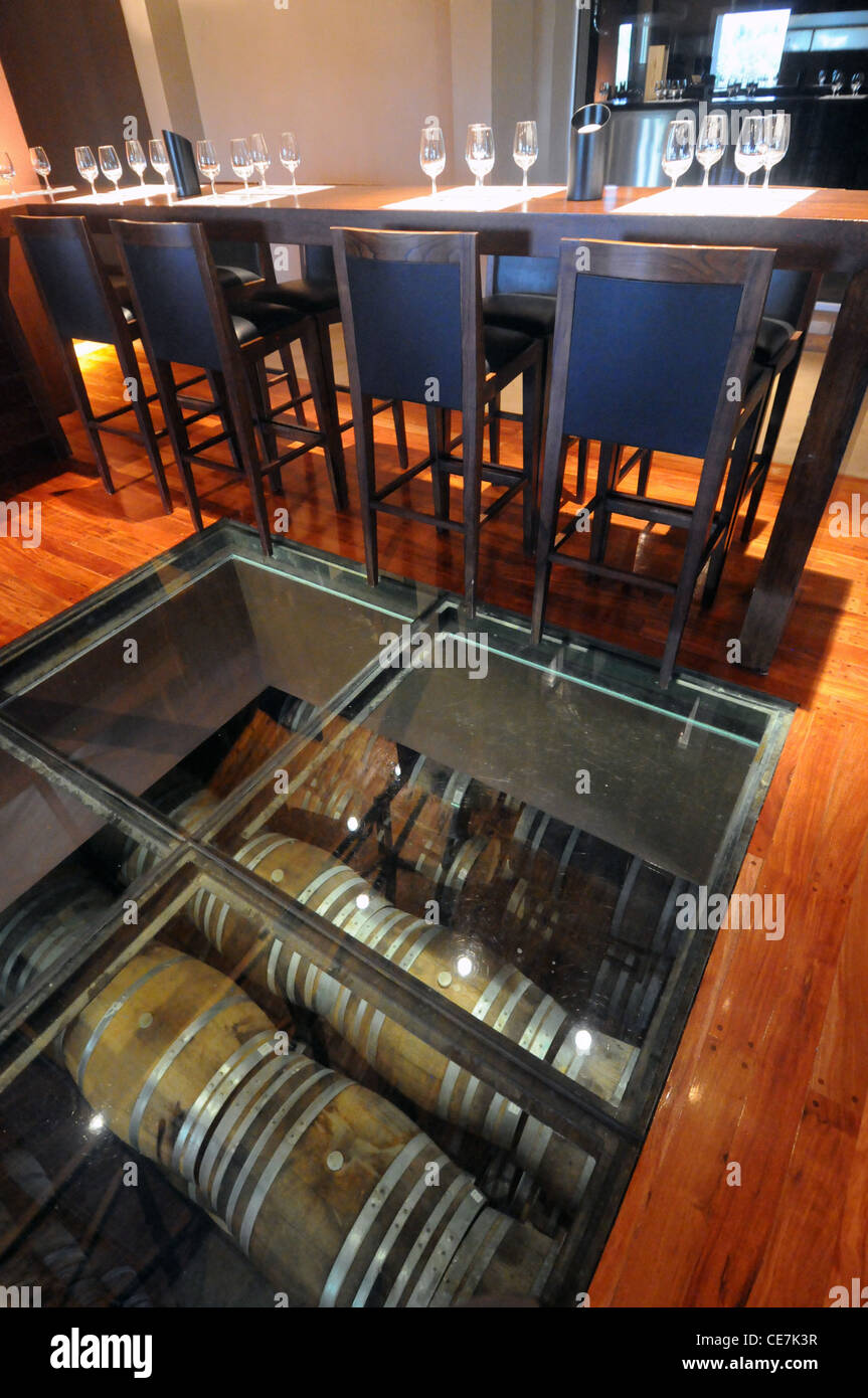 Glass floor of tasting room, looking down on wine barrels, Trapiche winery, Mendoza, Argentina. No PR - Stock Image