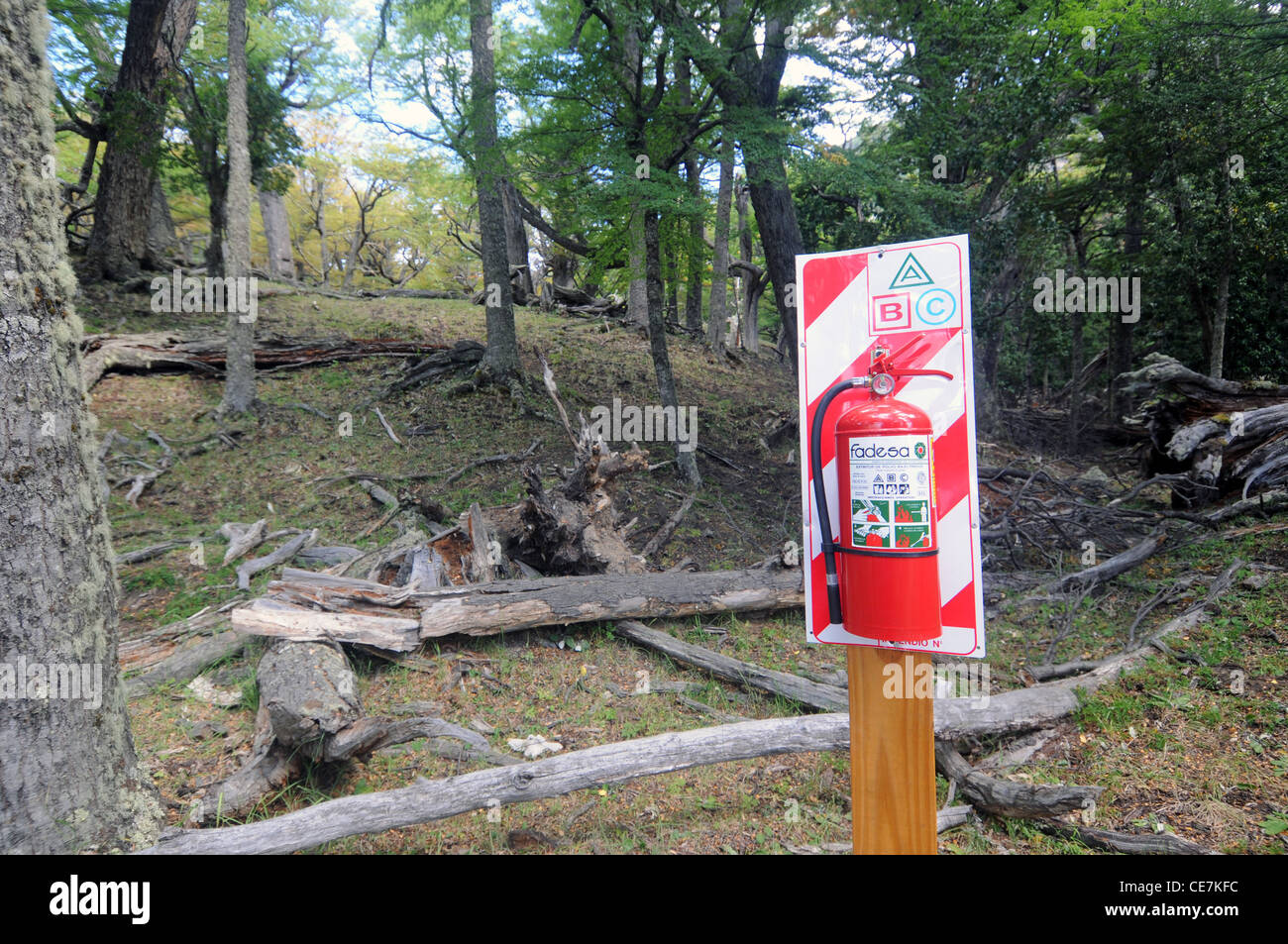Fire extinguisher in the forest during high-risk wildfire season, Los Glaciares National Park, Patagonia, Argentina. - Stock Image