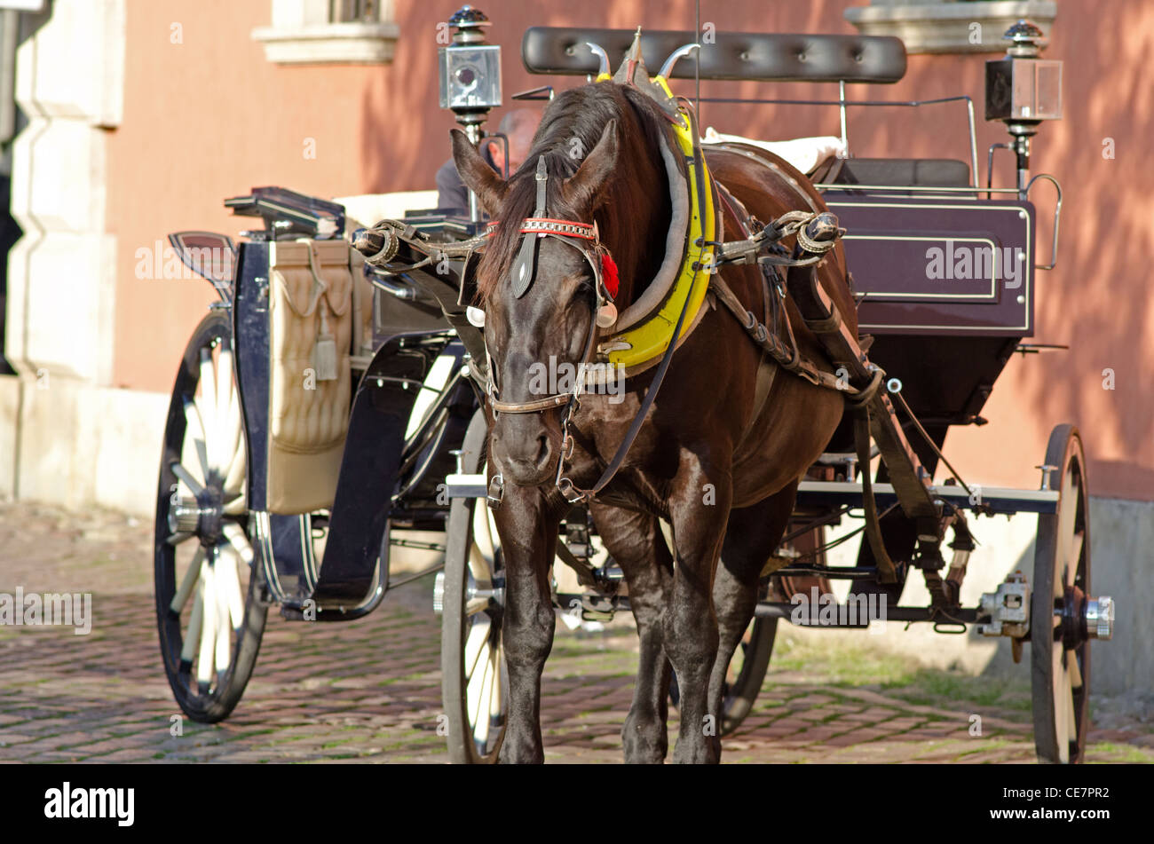 Horse and carriage in Warsaw Old Town, Poland - Stock Image