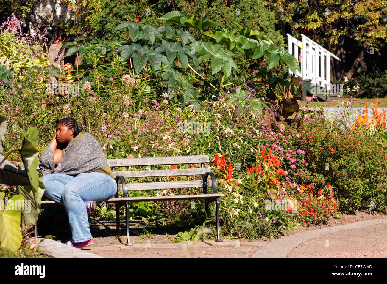 African American woman sitting on a park bench - Stock Image