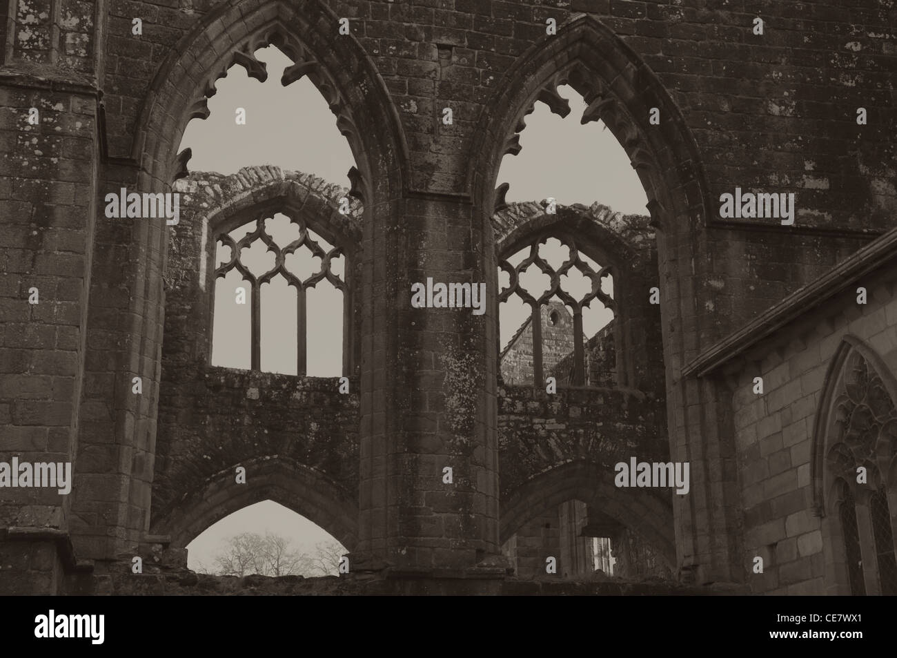 Bolton Abbey, North Yorkshire - Stock Image