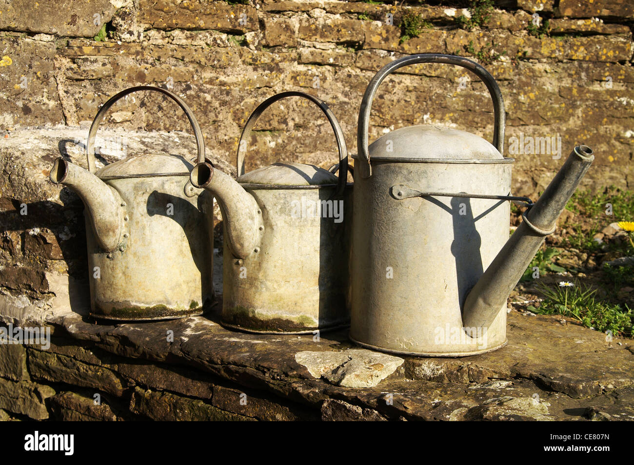 Three Watering Cans - Stock Image