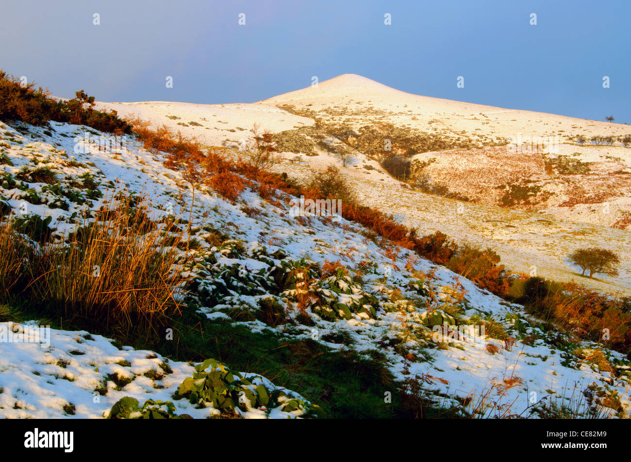 UK,Peak District,Derbyshire,Lose Hill - Stock Image