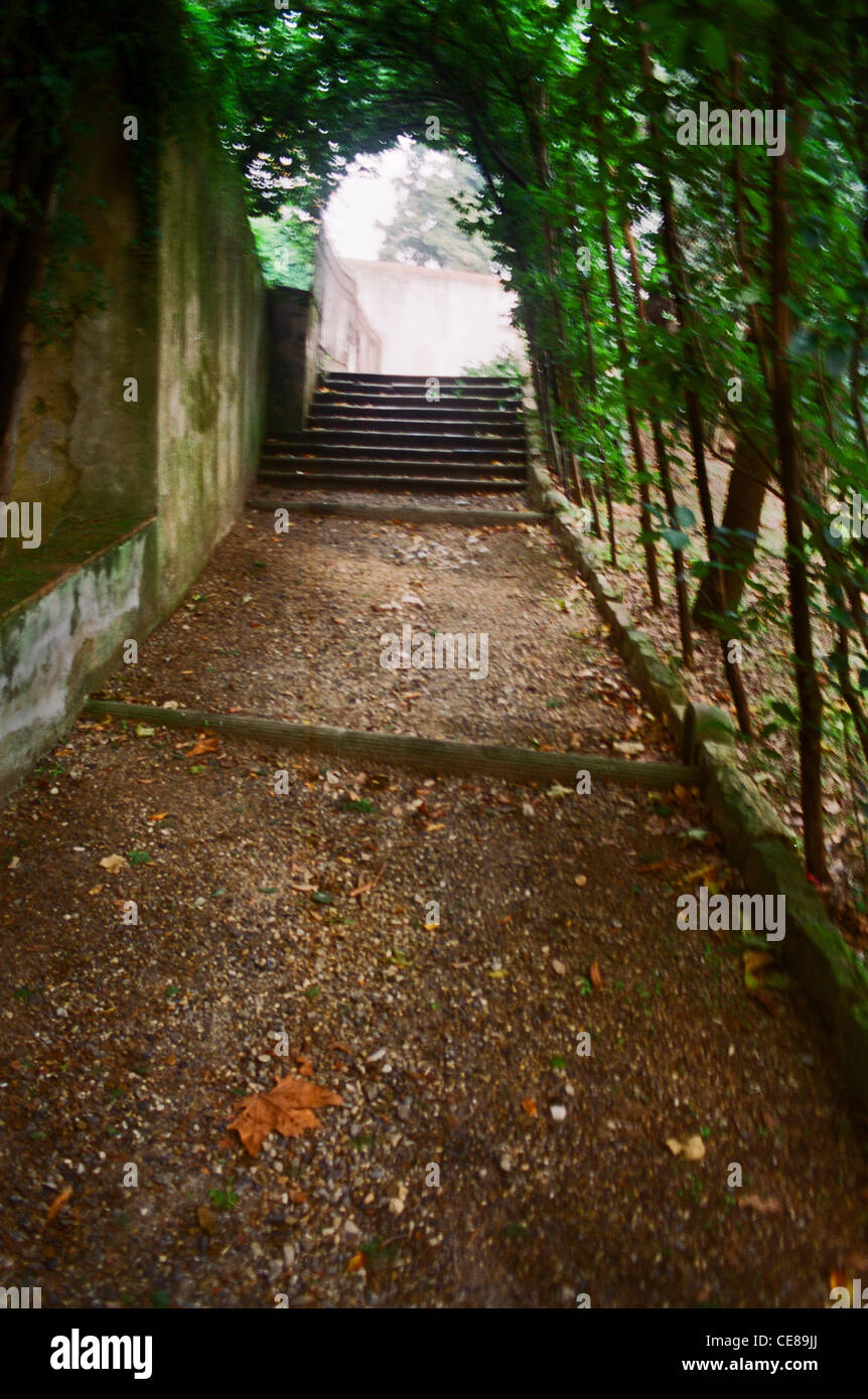 Walkway in Boboli Garden, under vines in Florence, Italy Stock Photo