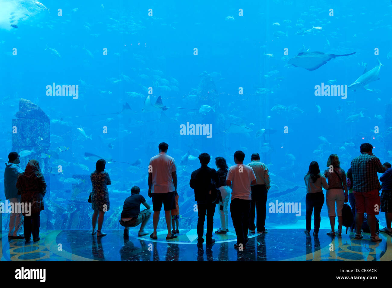 Dubai, Aquarium in the Atlantis The Palm Resort in Dubai - Stock Image