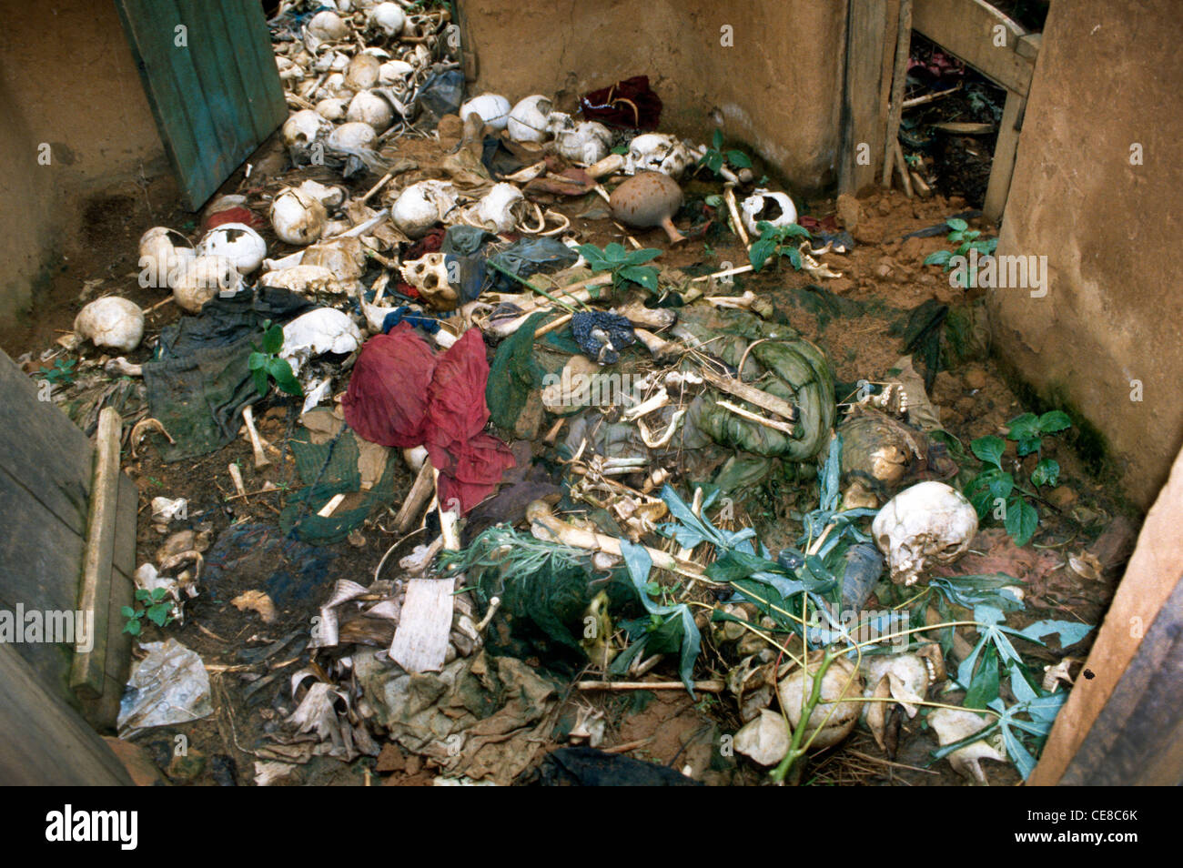 Bones and remains of victims in a massacre left in a house in Rwanda - Stock Image