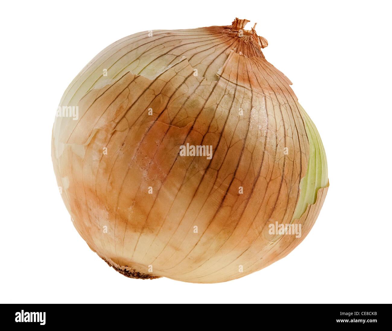 Peeling off onion dry skin Stock Photo