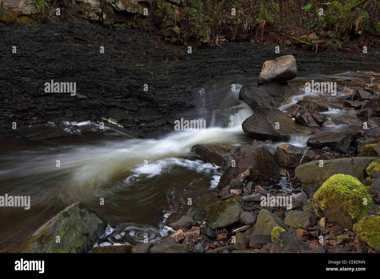 Middlehope Burn Running Through Slit Wood a Site of Special Scientific Interest Westgate in Weardale County Durham - Stock Image