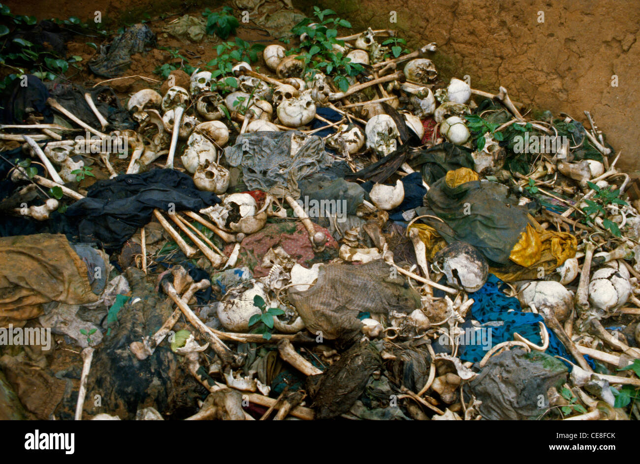 Bones of victims in a massacre left in a house in Rwanda - Stock Image