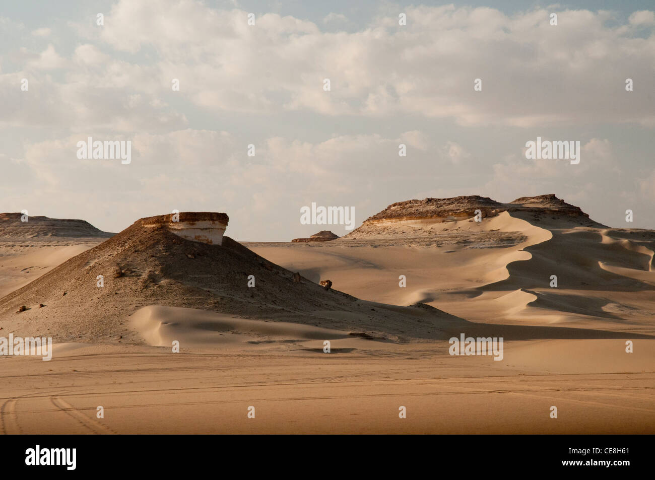 Sand dunes in the Great Sand Sea, Western Desert, Egypt - Stock Image