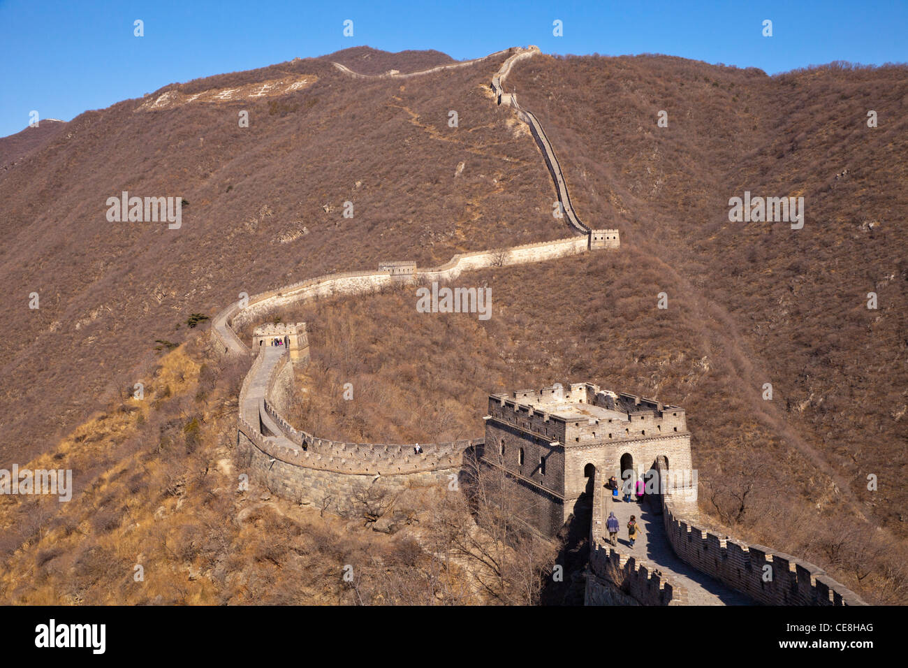 The restored section of the Great Wall of China at Mutianyu, near Beijing, taken in late winter conditions. - Stock Image