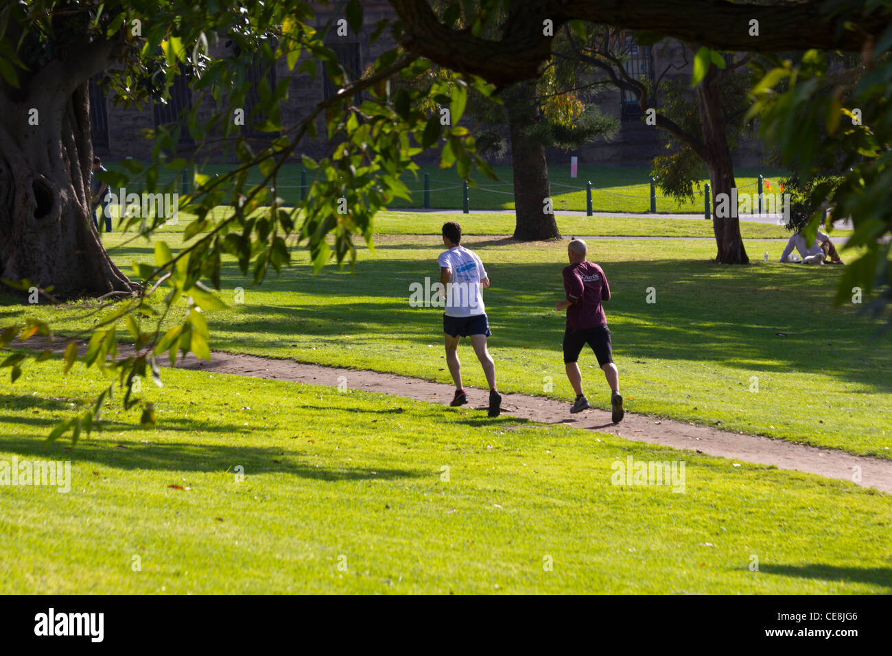joggers in the Domain park, Sydney, Australia - Stock Image