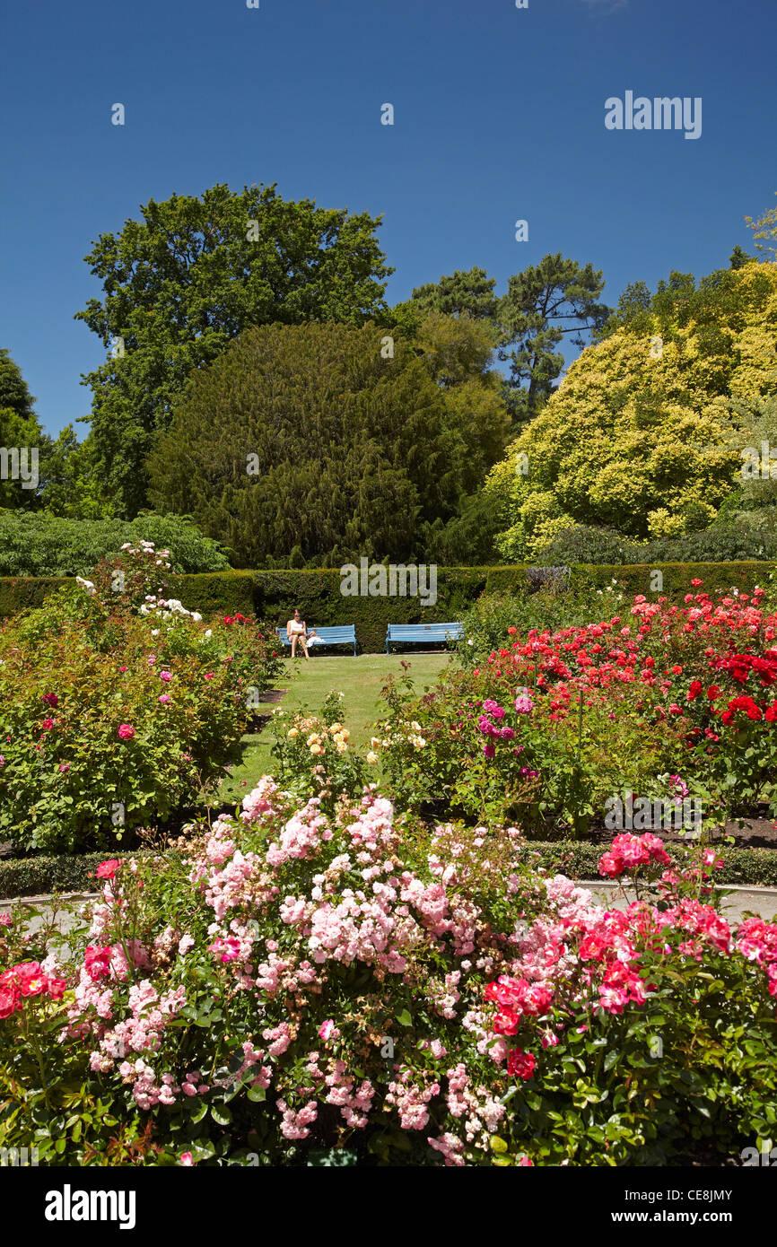 Central Rose Garden Stock Photos & Central Rose Garden Stock Images ...