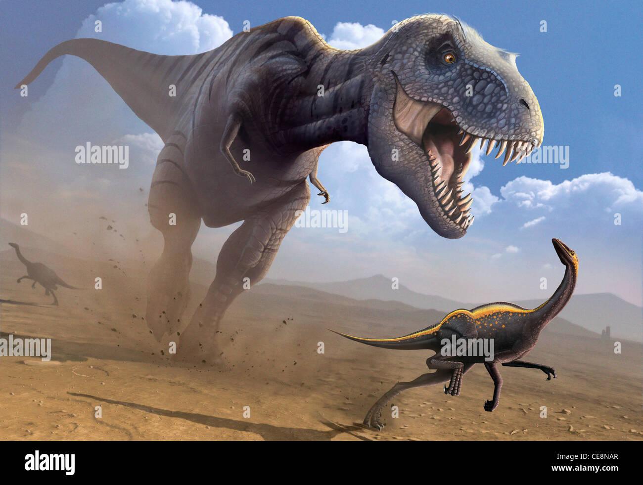Computer artwork Tyrannosaurus rex dinosaur hunting Ornithomimus dinosaur T rex was among largest carnivorous dinosaurs - Stock Image