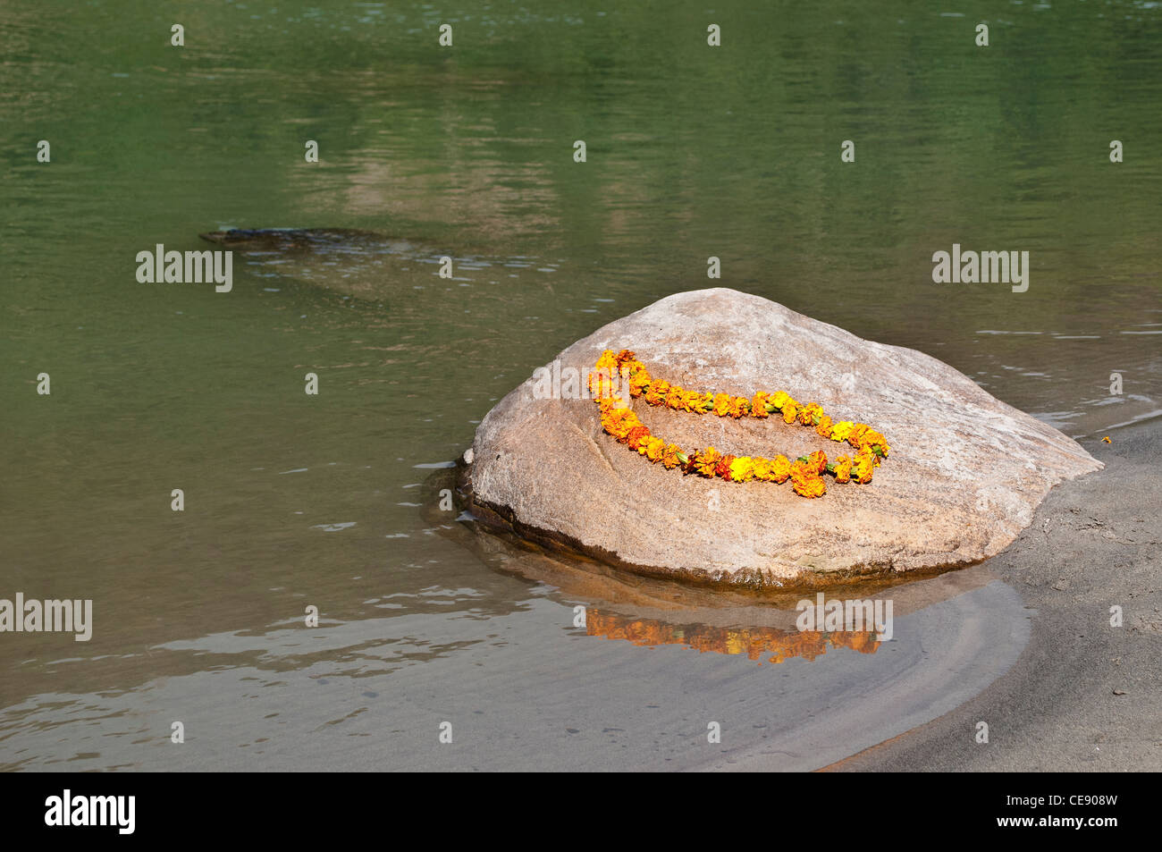 Garland of marigold flowers on a stone in the Ganges river, Rishikesh, Uttarakhand, India - Stock Image