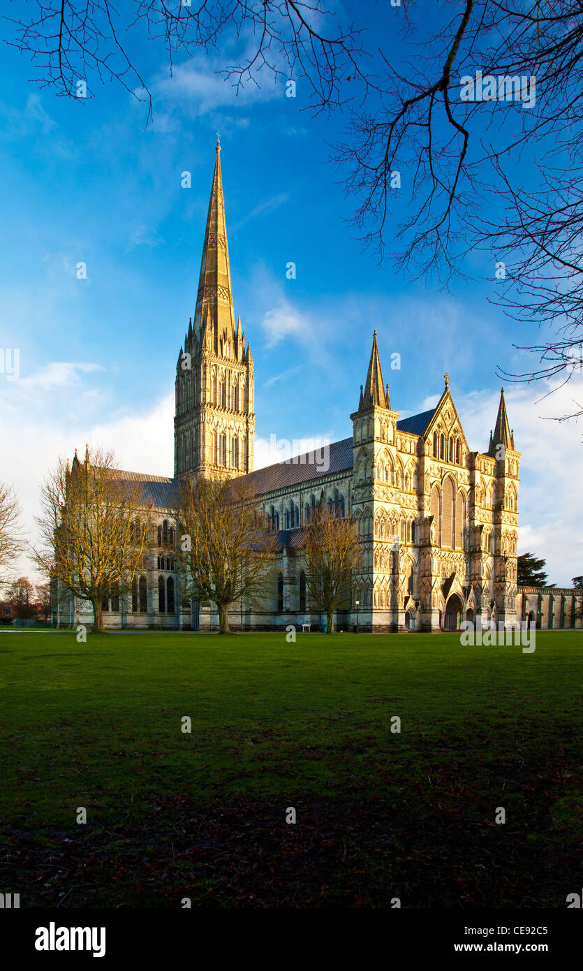 Golden evening light falls on the west facade and spire of Salisbury Cathedral, Wiltshire, England, UK - Stock Image
