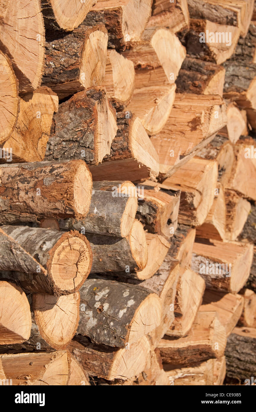Firewood stacked to dry in a pile outdoors - Stock Image